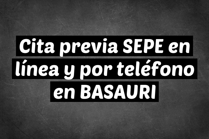 Cita previa SEPE en línea y por teléfono en BASAURI