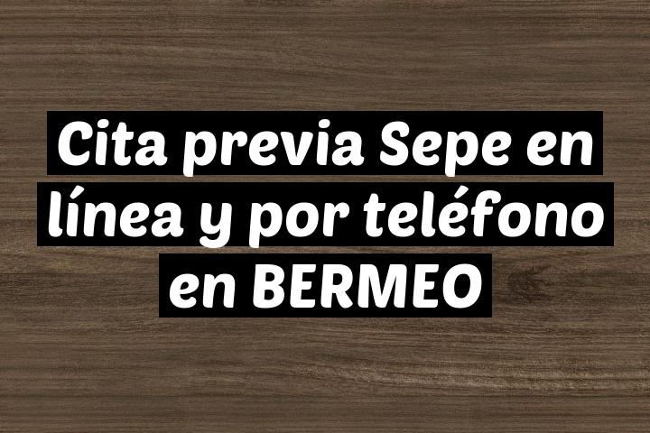 Cita previa Sepe en línea y por teléfono en BERMEO