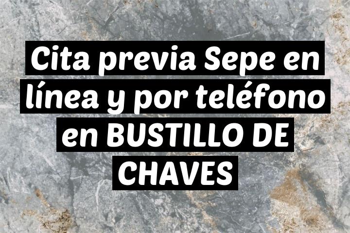 Cita previa Sepe en línea y por teléfono en BUSTILLO DE CHAVES