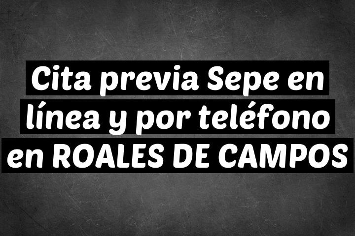Cita previa Sepe en línea y por teléfono en ROALES DE CAMPOS