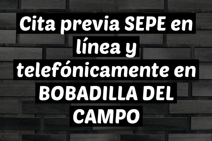 Cita previa SEPE en línea y telefónicamente en BOBADILLA DEL CAMPO