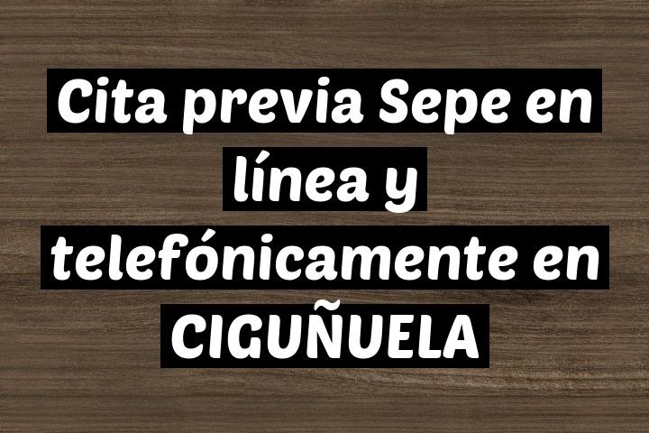 Cita previa Sepe en línea y telefónicamente en CIGUÑUELA