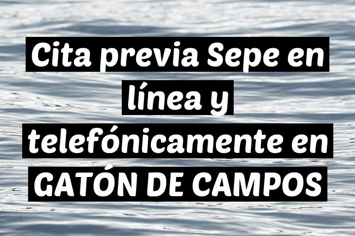 Cita previa Sepe en línea y telefónicamente en GATÓN DE CAMPOS