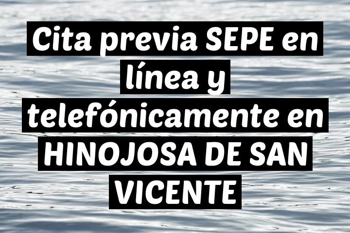 Cita previa SEPE en línea y telefónicamente en HINOJOSA DE SAN VICENTE