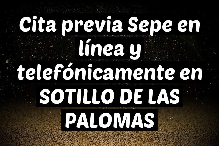 Cita previa Sepe en línea y telefónicamente en SOTILLO DE LAS PALOMAS
