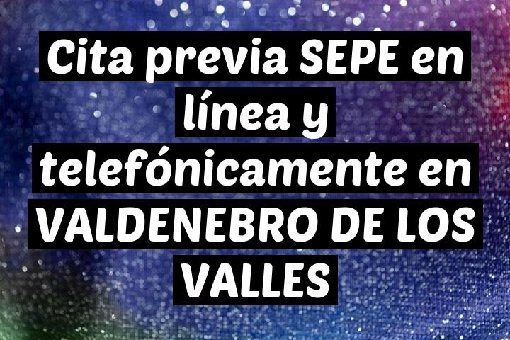 Cita previa SEPE en línea y telefónicamente en VALDENEBRO DE LOS VALLES