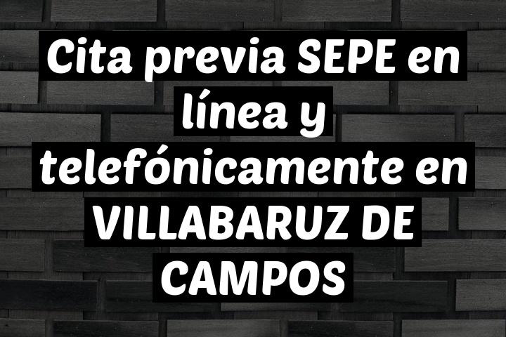 Cita previa SEPE en línea y telefónicamente en VILLABARUZ DE CAMPOS