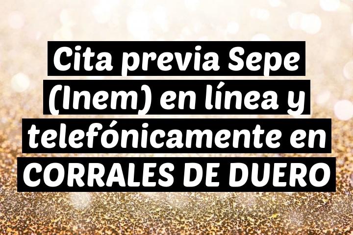 Cita previa Sepe (Inem) en línea y telefónicamente en CORRALES DE DUERO