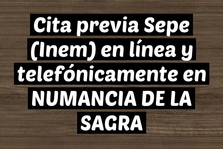 Cita previa Sepe (Inem) en línea y telefónicamente en NUMANCIA DE LA SAGRA