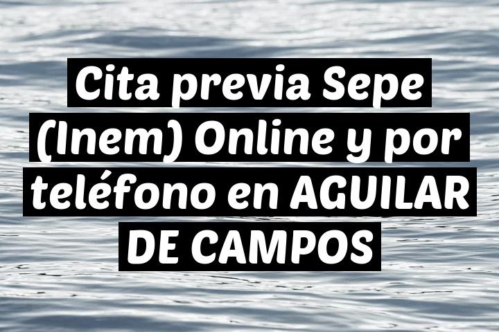 Cita previa Sepe (Inem) Online y por teléfono en AGUILAR DE CAMPOS