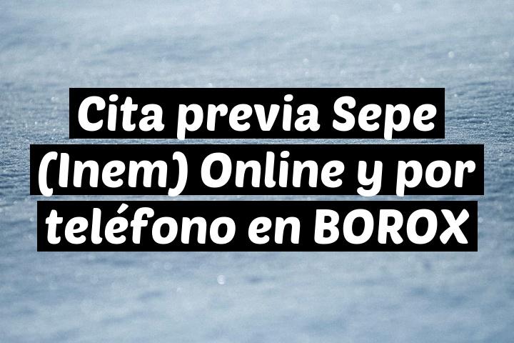 Cita previa Sepe (Inem) Online y por teléfono en BOROX