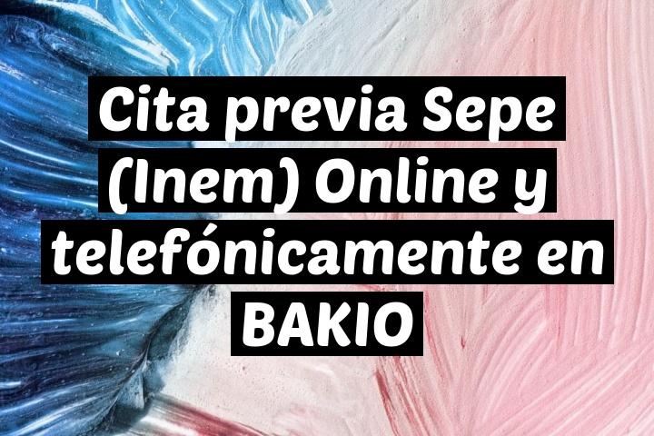 Cita previa Sepe (Inem) Online y telefónicamente en BAKIO
