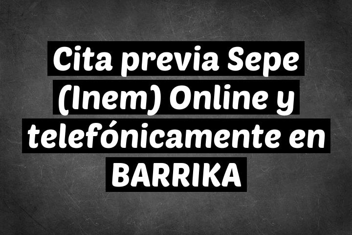 Cita previa Sepe (Inem) Online y telefónicamente en BARRIKA