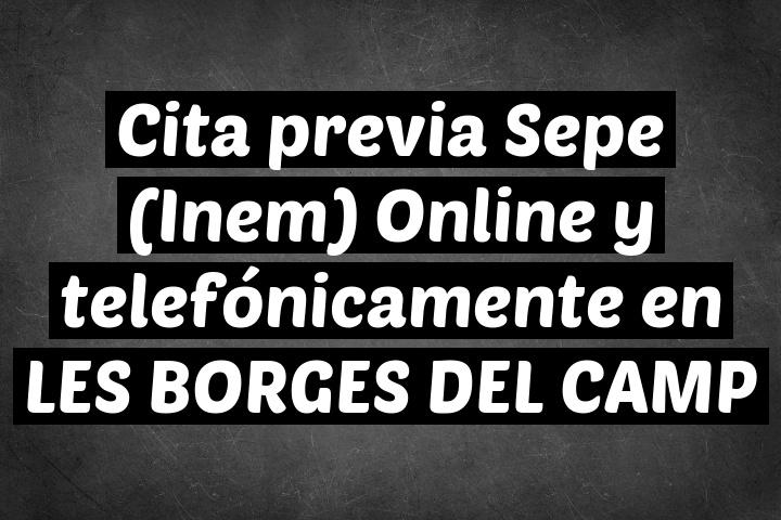 Cita previa Sepe (Inem) Online y telefónicamente en LES BORGES DEL CAMP