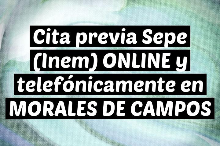 Cita previa Sepe (Inem) ONLINE y telefónicamente en MORALES DE CAMPOS
