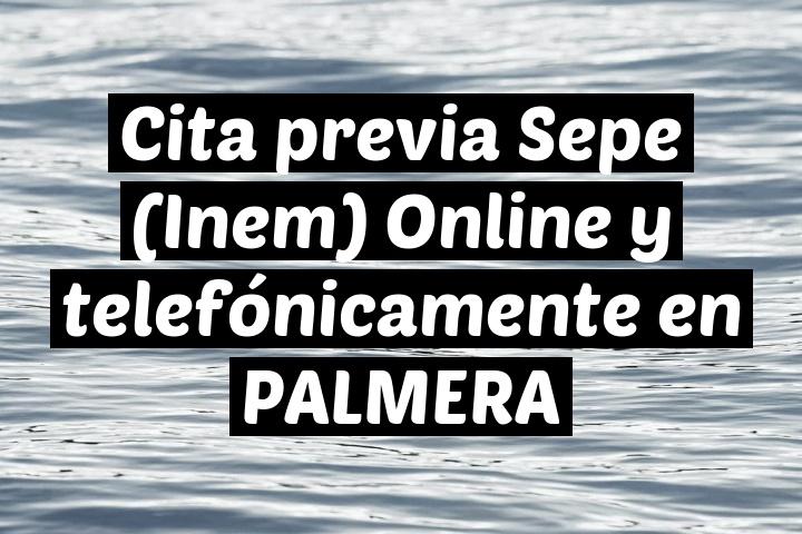 Cita previa Sepe (Inem) Online y telefónicamente en PALMERA