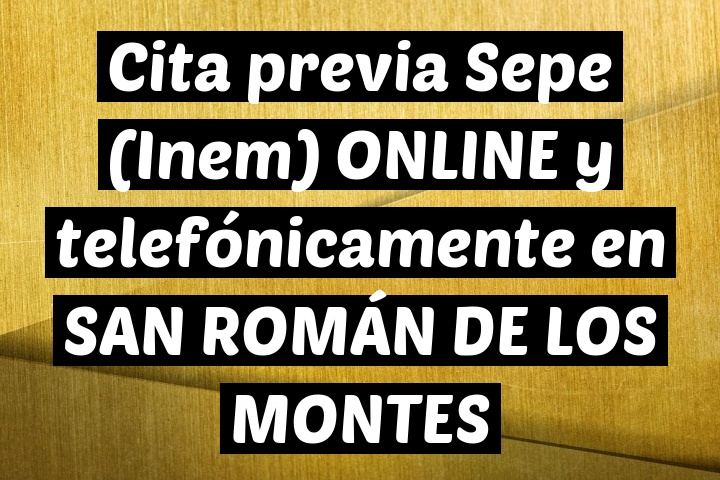 Cita previa Sepe (Inem) ONLINE y telefónicamente en SAN ROMÁN DE LOS MONTES