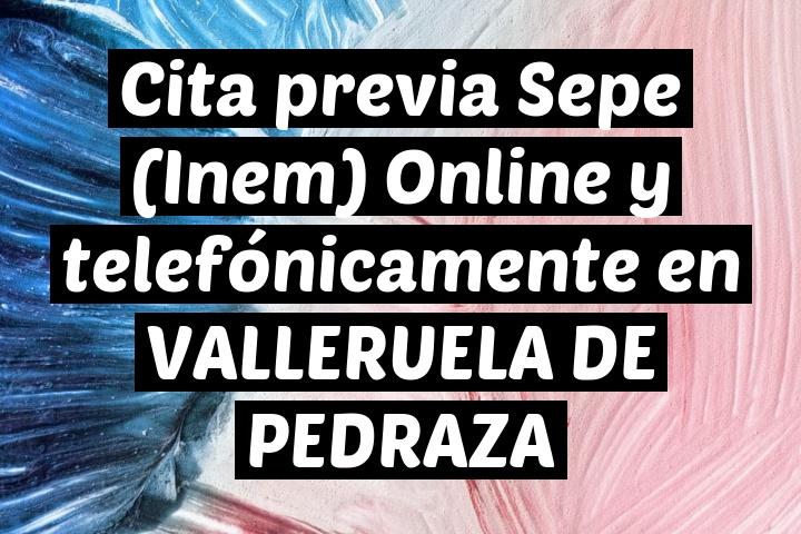 Cita previa Sepe (Inem) Online y telefónicamente en VALLERUELA DE PEDRAZA