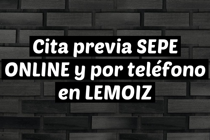 Cita previa SEPE ONLINE y por teléfono en LEMOIZ