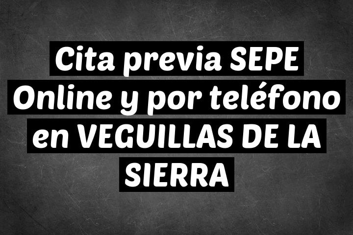 Cita previa SEPE Online y por teléfono en VEGUILLAS DE LA SIERRA
