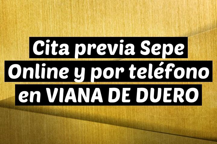 Cita previa Sepe Online y por teléfono en VIANA DE DUERO