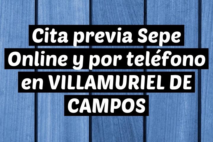 Cita previa Sepe Online y por teléfono en VILLAMURIEL DE CAMPOS
