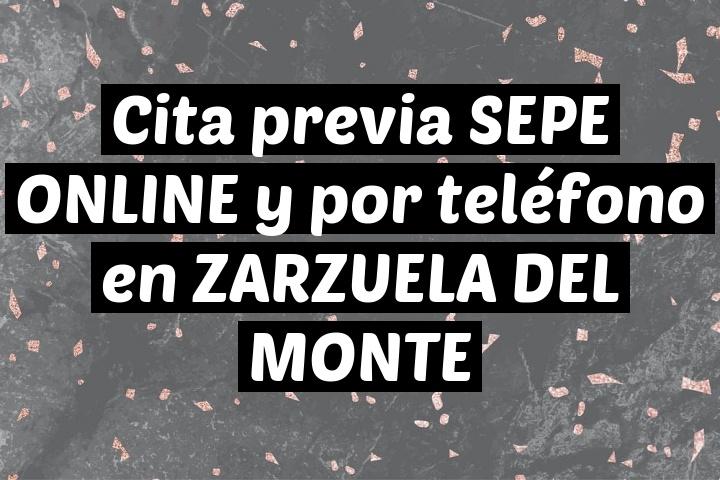 Cita previa SEPE ONLINE y por teléfono en ZARZUELA DEL MONTE