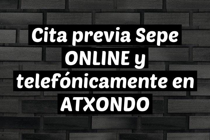 Cita previa Sepe ONLINE y telefónicamente en ATXONDO