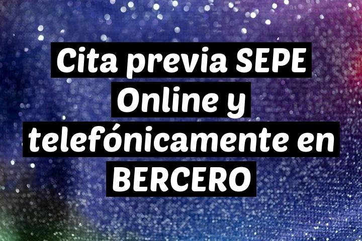 Cita previa SEPE Online y telefónicamente en BERCERO