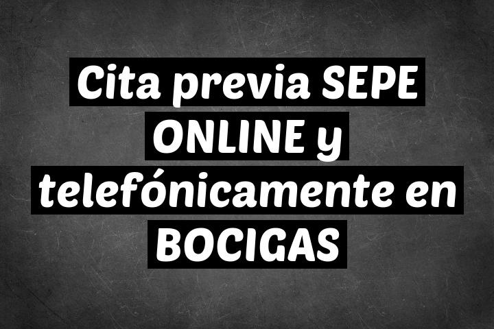 Cita previa SEPE ONLINE y telefónicamente en BOCIGAS