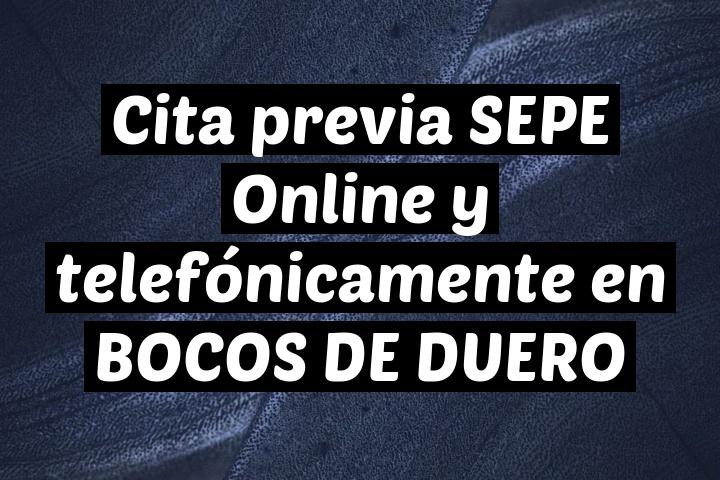 Cita previa SEPE Online y telefónicamente en BOCOS DE DUERO