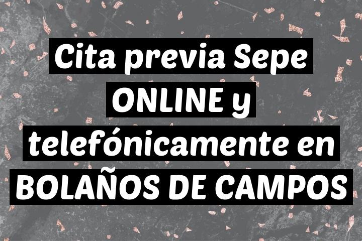 Cita previa Sepe ONLINE y telefónicamente en BOLAÑOS DE CAMPOS