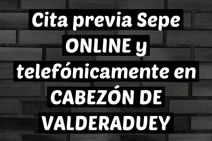 Cita previa Sepe ONLINE y telefónicamente en CABEZÓN DE VALDERADUEY