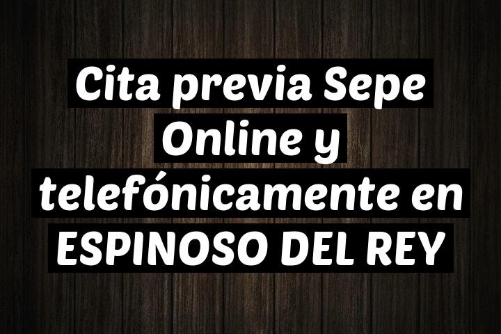 Cita previa Sepe Online y telefónicamente en ESPINOSO DEL REY