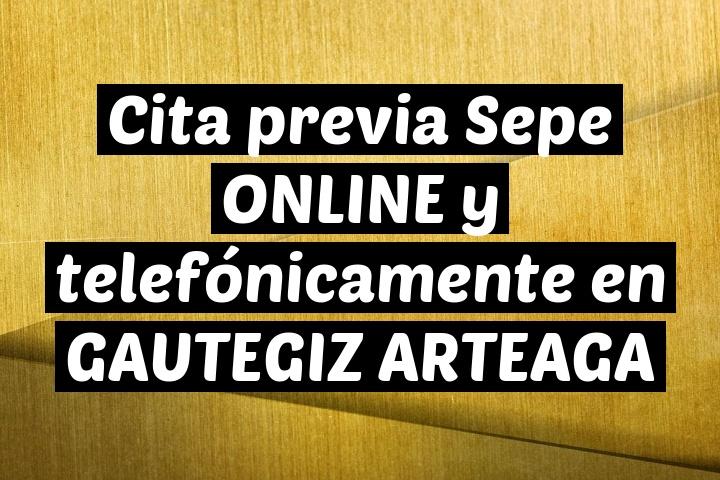 Cita previa Sepe ONLINE y telefónicamente en GAUTEGIZ ARTEAGA