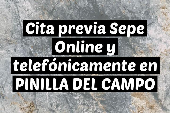 Cita previa Sepe Online y telefónicamente en PINILLA DEL CAMPO