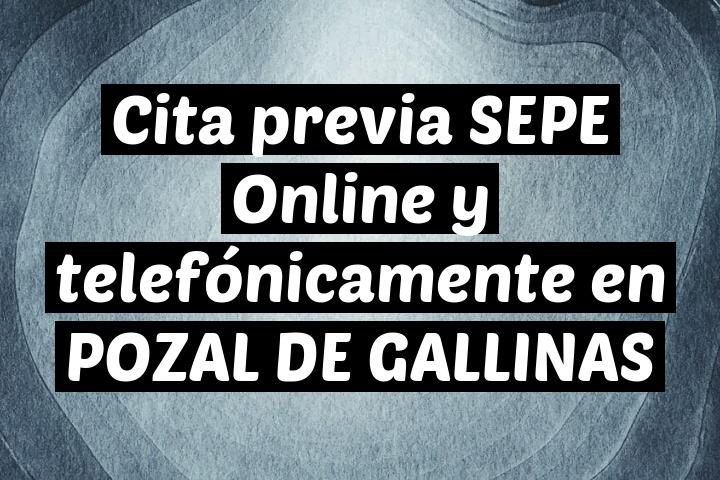 Cita previa SEPE Online y telefónicamente en POZAL DE GALLINAS