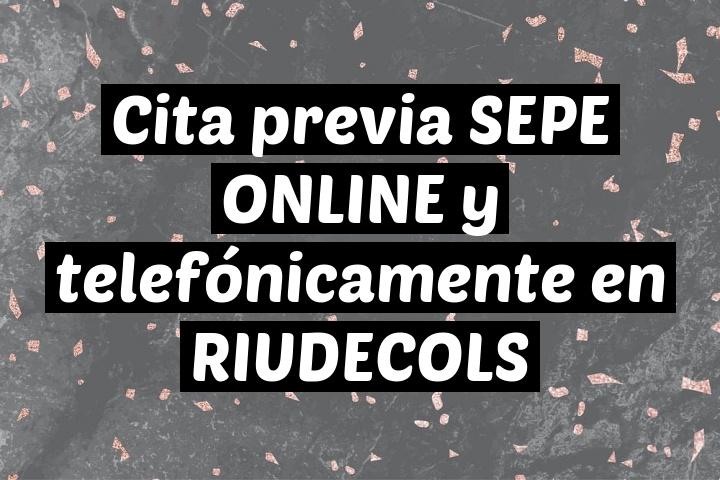 Cita previa SEPE ONLINE y telefónicamente en RIUDECOLS
