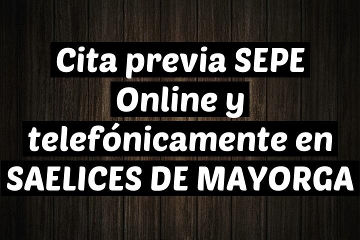 Cita previa SEPE Online y telefónicamente en SAELICES DE MAYORGA