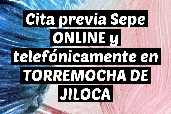 Cita previa Sepe ONLINE y telefónicamente en TORREMOCHA DE JILOCA
