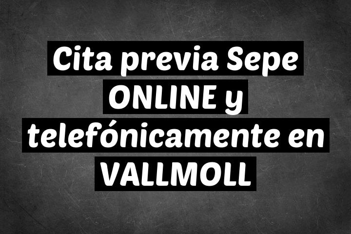 Cita previa Sepe ONLINE y telefónicamente en VALLMOLL