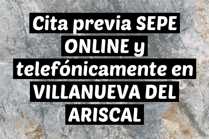Cita previa SEPE ONLINE y telefónicamente en VILLANUEVA DEL ARISCAL