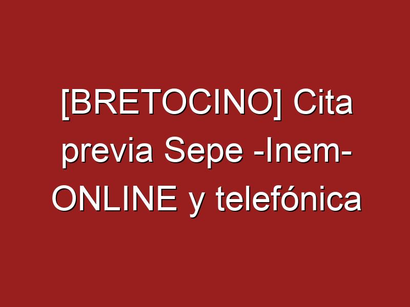 [BRETOCINO] Cita previa Sepe -Inem- ONLINE y telefónica