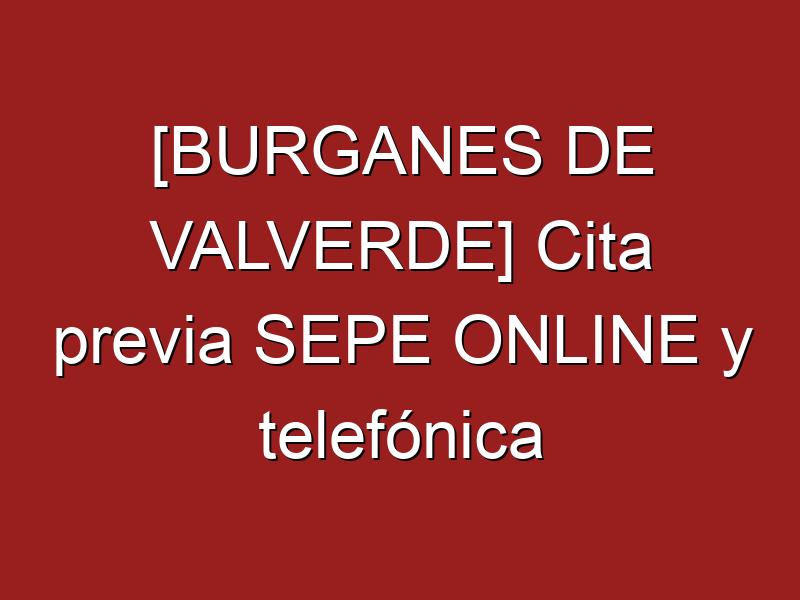 [BURGANES DE VALVERDE] Cita previa SEPE ONLINE y telefónica
