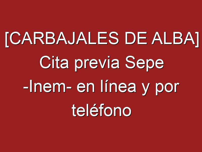 [CARBAJALES DE ALBA] Cita previa Sepe -Inem- en línea y por teléfono