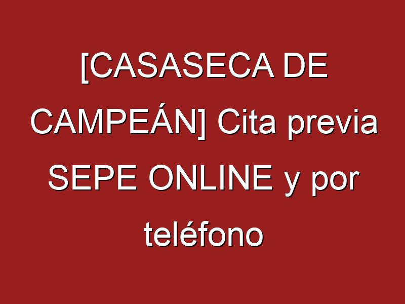 [CASASECA DE CAMPEÁN] Cita previa SEPE ONLINE y por teléfono