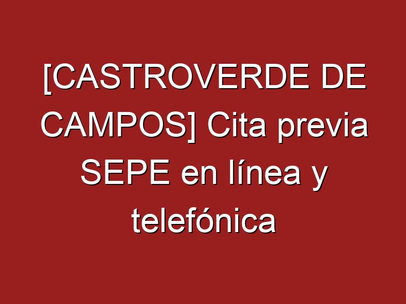 [CASTROVERDE DE CAMPOS] Cita previa SEPE en línea y telefónica