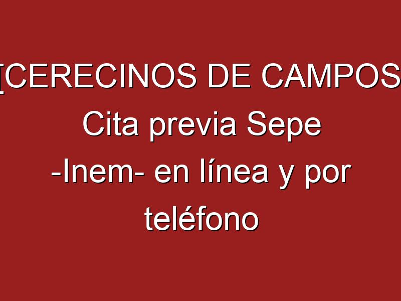[CERECINOS DE CAMPOS] Cita previa Sepe -Inem- en línea y por teléfono