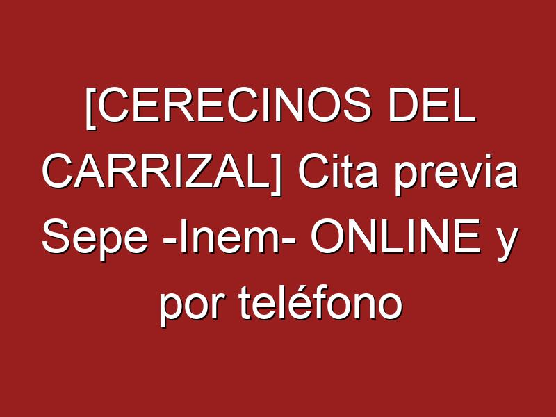 [CERECINOS DEL CARRIZAL] Cita previa Sepe -Inem- ONLINE y por teléfono