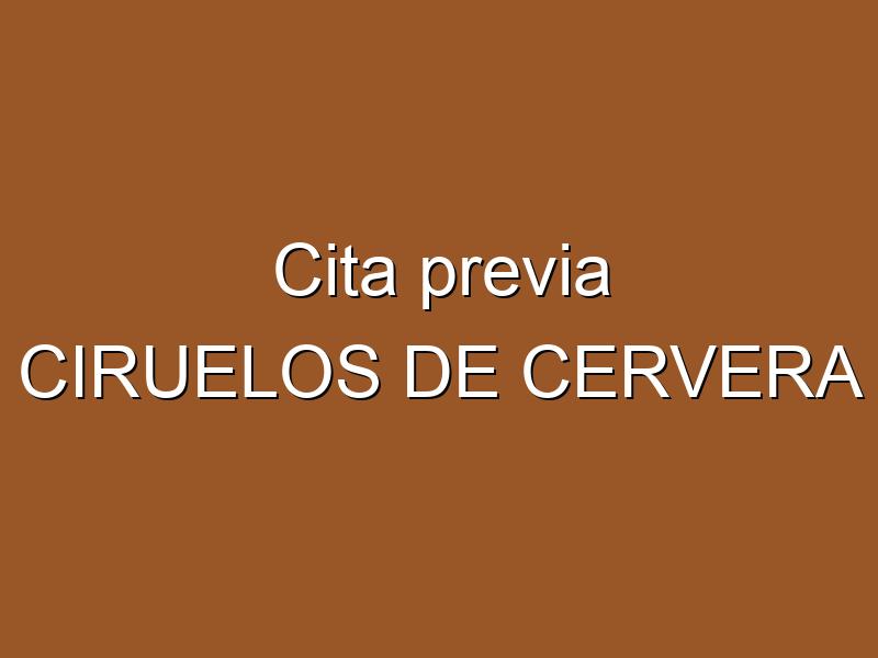 Cita previa CIRUELOS DE CERVERA